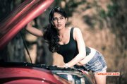 Galleries Tamil Movie Actress Disha Pandey 8740