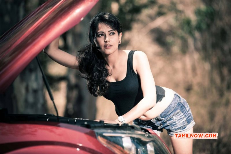 Galleries Tamil Movie Actress Disha Pandey 8740