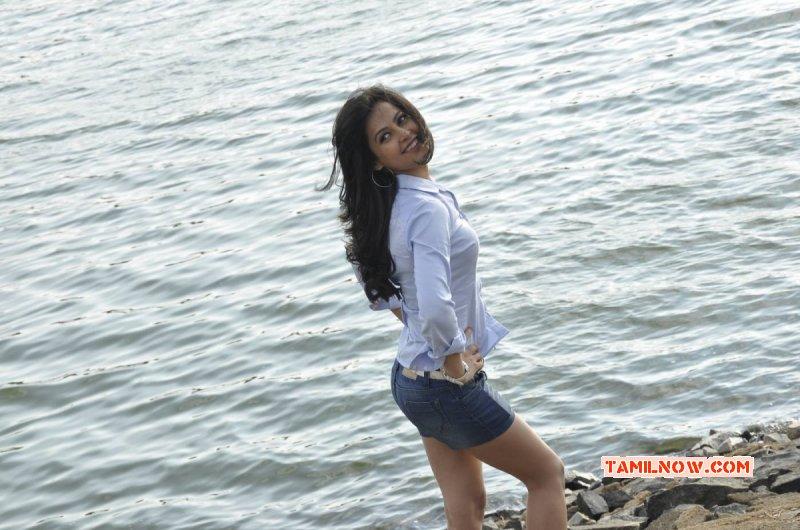 New Stills Disha Pandey South Actress 2142