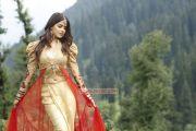 Actress Genelia Latest Photo 948
