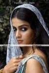 Actress Genelia New Pics 2