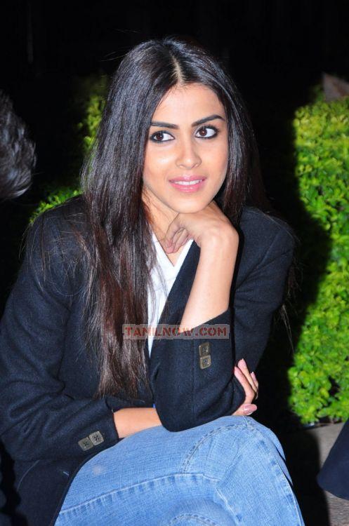 Tamil Actress Genelia Dsouza Stills 946