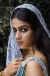 Tamil Actress Genelia Photos 847
