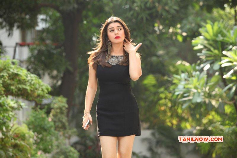 2015 Photo Hansika Motwani Indian Actress 7260
