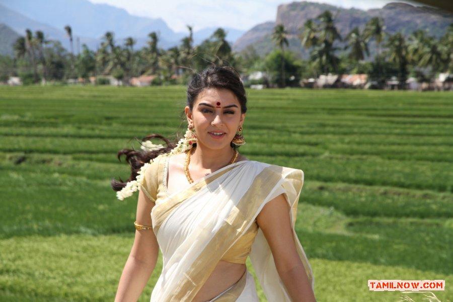 Actress Hansika Motwani 4759
