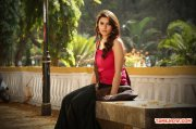 Actress Hansika Motwani Stills 7435
