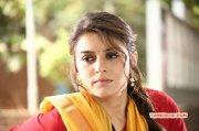 Dec 2014 Picture Indian Actress Hansika Motwani 2028
