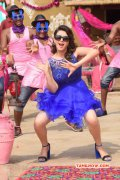 Film Actress Hansika Motwani New Wallpapers 3640