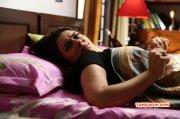 Hansika Motwani Indian Actress Dec 2014 Pic 9476