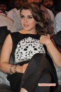 Hansika Motwani Movie Actress 2015 Picture 1761