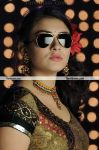 Hansika Motwani New Hot Still 8