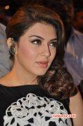 Hansika Motwani Tamil Actress Albums 4276