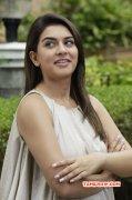 Hansika Motwani Tamil Movie Actress Recent Still 4784