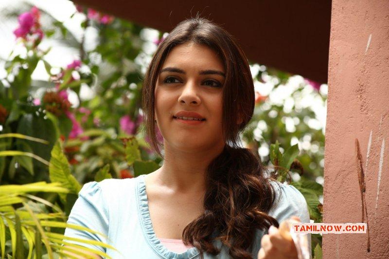 Latest Galleries Hansika Motwani Tamil Movie Actress 2285