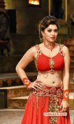 Latest Photo Hansika Motwani Cinema Actress 3382