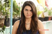 Recent Galleries Hansika Motwani Cinema Actress 327
