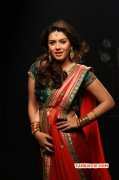 Recent Still Hansika Motwani Indian Actress 7063