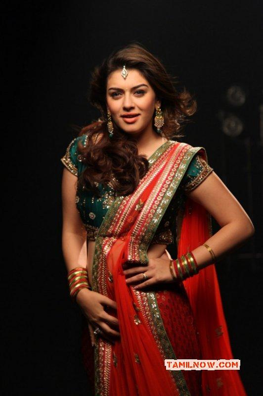 Recent Still Hansika Motwani Indian Actress 7063