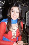 Tamil Actress Hansika Motwani 1134