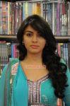 Tamil Actress Hansika Motwani 635