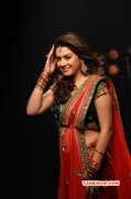 Wallpaper Hansika Motwani Tamil Movie Actress 9621