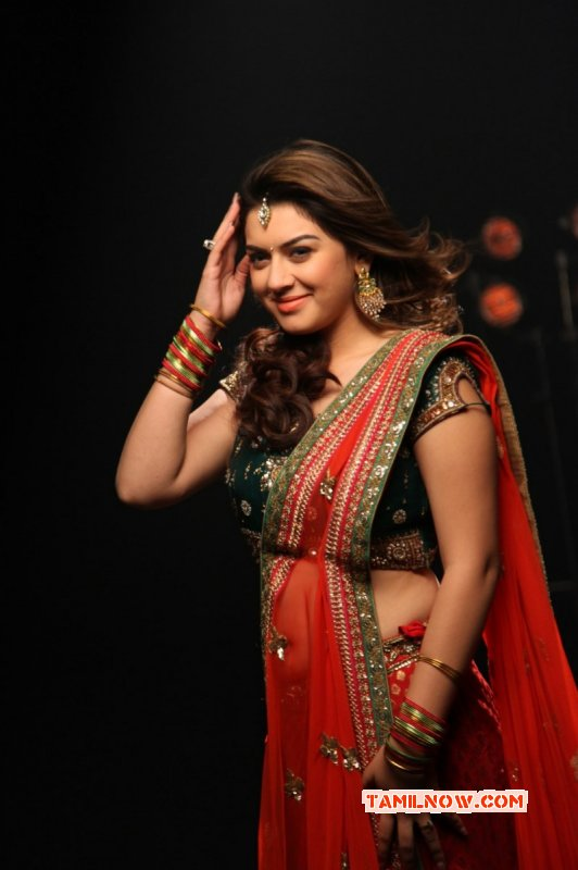 Wallpaper Hansika Motwani Tamil Movie Actress 9621