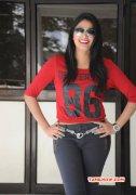 2014 Pics Haripriya Tamil Actress 2524