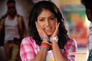 Dec 2014 Photo Haripriya Film Actress 2526