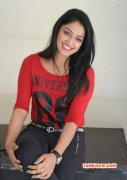 Dec 2014 Pic Movie Actress Haripriya 2192