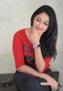 Haripriya Film Actress 2014 Pics 1896