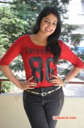 Photos Tamil Movie Actress Haripriya 7937