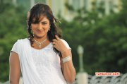 South Actress Haripriya Latest Gallery 4238