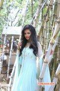 Jun 2015 Images Film Actress Hashika Dutt 3898