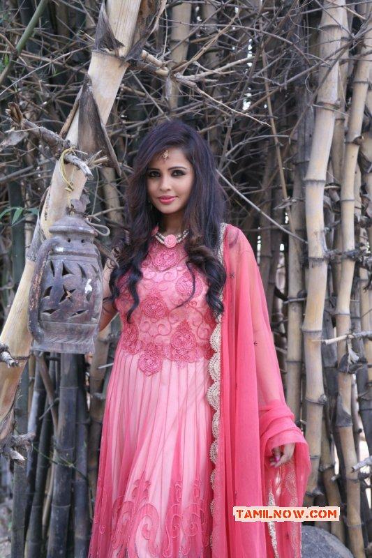 Jun 2015 Wallpaper South Actress Hashika Dutt 7990