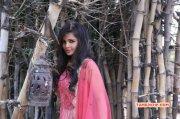 Recent Gallery Movie Actress Hashika Dutt 8941