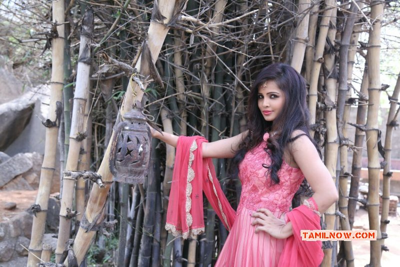 Tamil Actress Hashika Dutt 2015 Stills 4096