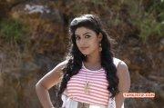2016 Pics Cinema Actress Iniya 8655