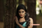 Cinema Actress Iniya Recent Wallpaper 3456