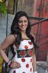 Tamil Actress Iniya New Photo 384