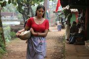Tamil Actress Iniya Photos 2932
