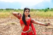 Tamil Actress Iniya Photos 7891