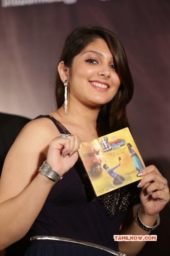 Tamil Heroine Ishita Latest Wallpapers 6016