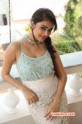 Janani Iyer Cinema Actress New Wallpaper 7598