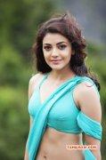 Latest Still Tamil Heroine Kajal Agarwal 7501
