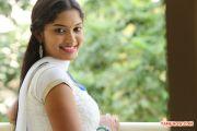 Actress Kangaroo Actress Priyanka 5031