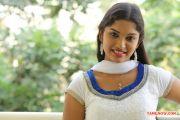 Actress Kangaroo Actress Priyanka 9167