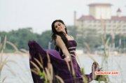 2015 Album Karthika Nair Indian Actress 9402