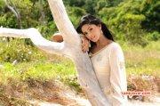 Karthika Nair South Actress 2015 Pic 2596