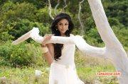 Pic Karthika Nair Heroine 4347