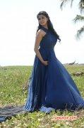 2015 Picture Tamil Heroine Keerthi Suresh 1174